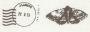 Postmark Butterfly Lint 25 mm